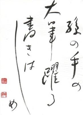 haiku-291x400